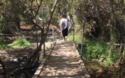 Take a Hike- Los Peñasquitos Canyon Preserve
