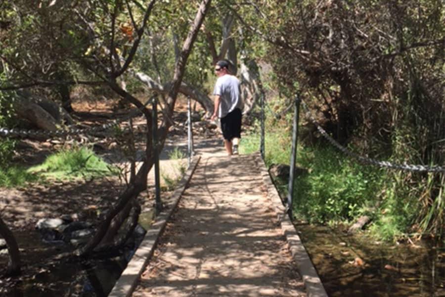 Take a Hike- Los Peñasquitos Canyon Preserve