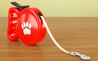 Put That Leash Down! The Dangers of Retractable Leashes