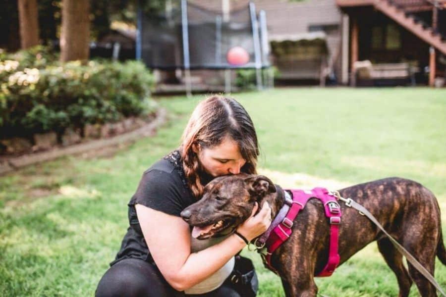 Dog Trainer Extraordinaire