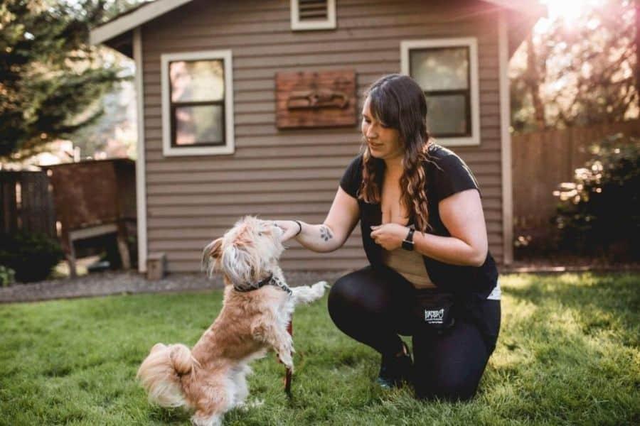 Meet Tay! Dog Trainer Extraordinaire