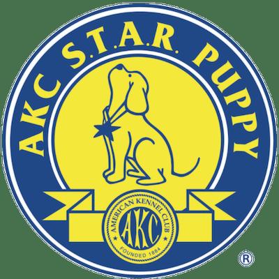 AKC S.T.A.R. Puppy Classes